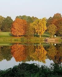AAsee Herbst